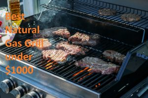 The Best Natural Gas Grill under $1000 Consumer Reports 2020