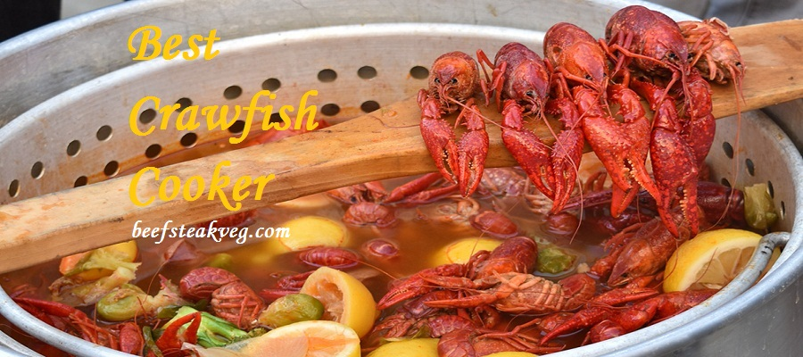 Best Crawfish Cooker