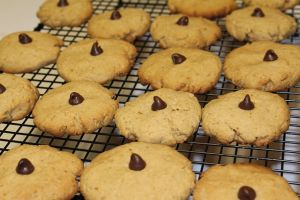 Can I Use a Cooling Rack in the Oven? Some Tips for Kitchen Lovers