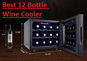 What is The Best 12 Bottle Wine Cooler For Sale?