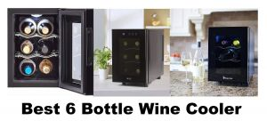 The Best 6 Bottle Wine Cooler According to Sommeliers & Winemakers